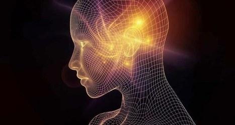 Optogénétique, mode d'emploi | EntomoScience | Scoop.it