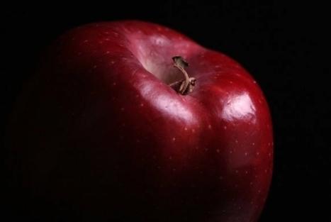 Os 7 pecados capitais no mundo do trabalho | Cultura de massa no Século XXI (Mass Culture in the XXI Century) | Scoop.it