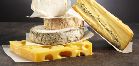 Les huit grandes familles et les différentes sortes de fromage | Remue-méninges FLE | Scoop.it