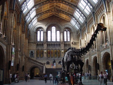 Natural History Museum Cultural Attractions in London < History   Travel Tour Guide   Scoop.it
