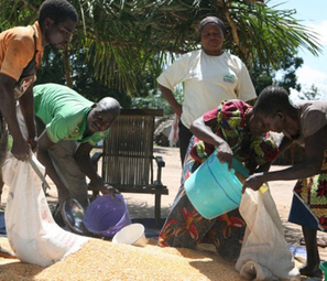 Afrique : l'Union africaine, la FAO et l'Institut Lula unissent leurs efforts pour éradiquer la faim | Radio des Nations Unies | On dit quoi ? | Scoop.it