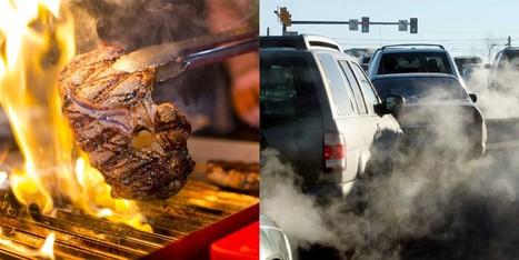 "Which Is Worse for the Planet: Beef or Cars? (""you'll be surprised at answer; your diet makes a diff"") 