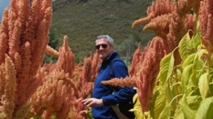 Interesting article on the potential of quinoa and its role in food secutiry .   Biocultural Diversity for Territorial Sustainable Development Reporter   Scoop.it