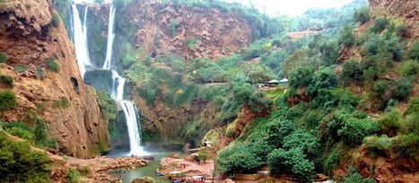 Excursion Cascades d'Ouzoud - la magie de la nature - Morocco Trip Travel   Tourisme   Scoop.it