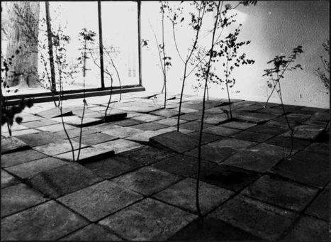 installation by Monika Kulicka | Art Installations, Sculpture, Contemporary Art | Scoop.it