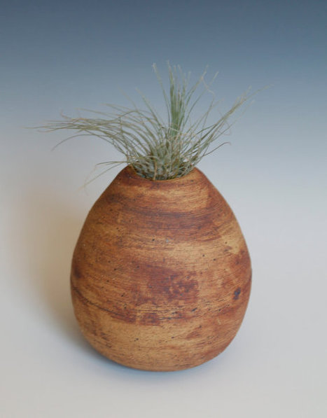 Air Plant Planter Pod- -Planters, Pottery for your Home | Good stuff to get | Scoop.it