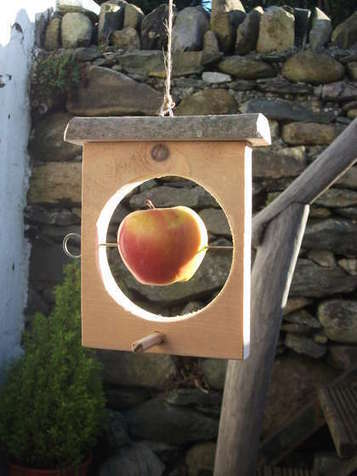Make an easy bird feeder. | Heimwerker | Scoop.it