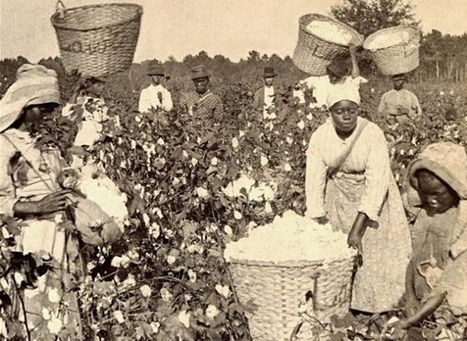 Top 6 countries that grew filthy rich from enslaving Black people - San Francisco Bay View | Une histoire de l'outre-mer : L'héritage colonial | Scoop.it