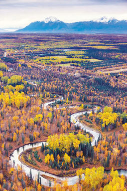 Elk ranch owners 'pay it forward' with salmon habitat preservation - Mat-Su Valley Frontiersman | Fish Habitat | Scoop.it