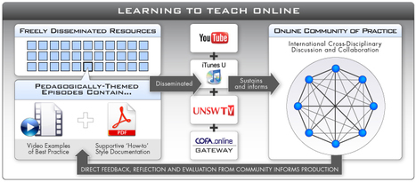 Learning to Teach Online ~ Univ. of New South Wales | Into the Driver's Seat | Scoop.it