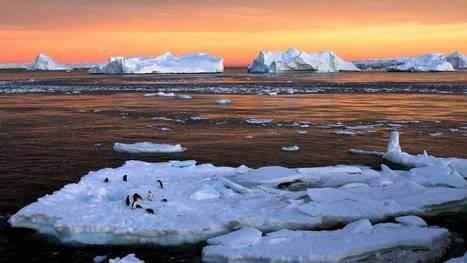 Los datos que indican que el cambio climático ya está alterando la vida del planeta | Climax | Scoop.it
