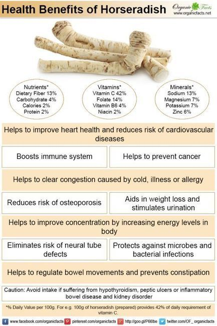 Health Benefits of Horseradish | Organic Facts | Food for Thought | Scoop.it