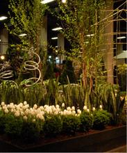 Helpful Natural Gardening Information, Advice, And Tips | TM Garden Design | Scoop.it