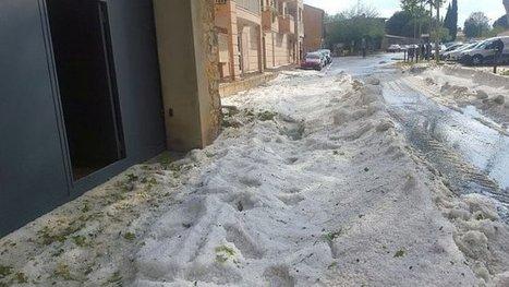 Grêle et inondations dans l'Hérault : dépôt des dossiers de calamités agricoles avant le 4 janvier - France 3 Languedoc-Roussillon   Actus en LR   Scoop.it