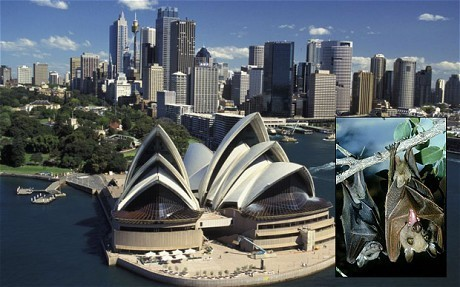 Expatzaustralia aim is to help you, as an expatriate.visit site:http://www.expatzaustralia.com | Expats Australia | Scoop.it