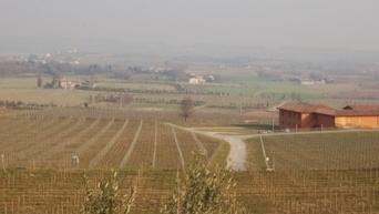 Un Bordeaux fait avec 50 % de cépage syrah des Côtes du Rhône | Epicure : Vins, gastronomie et belles choses | Scoop.it
