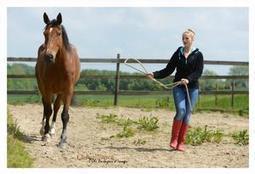 Etre Soi: Le coaching assisté par les chevaux. | Equi-coaching | Scoop.it