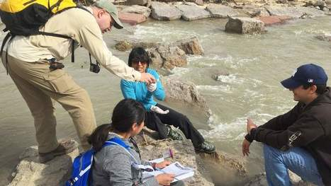 Navajo researcher leads search for answers about contamination | CALS in the News | Scoop.it