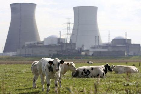 Nucléaire: vers le grand sauve-qui-peut   TRANSITURUM   Scoop.it