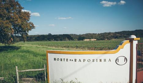 Monte da Raposinha - Vinho Alentejano de excelência | Wired Wines of Alentejo | Scoop.it