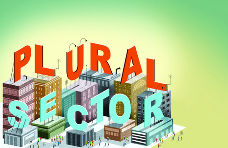 Time for the Plural Sector (SSIR) | Inclusive Business and Impact Investing | Scoop.it