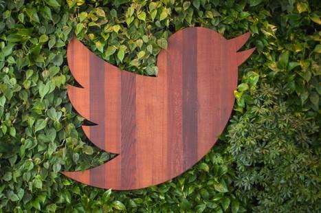 Twitter : 300 millions d'abonnés, 162 millions de dollars à éponger - Frandroid | Twitter for business | Scoop.it
