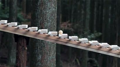 Touch Wood in a Japanese Forest... with Bach | For Anuradha | Scoop.it