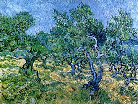 vincent Van Gogh olive grove | Humanities Foundation | Scoop.it
