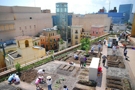 The 10 coolest urban gardens in the world - Greenius | Urbanisme | Scoop.it