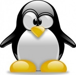 It's Here….Penguin 2.0. How Will It Affect YOUR Website! | SEO Tips, Advice, Help | Scoop.it