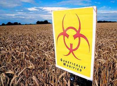 Monsanto Keeps Moving Toward A Lock On The World's Food System | MN News Hound | Scoop.it