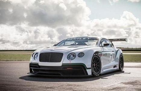 Did a wealthy Brazilian bury his Bentley in his garden? | garden | Scoop.it
