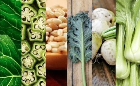 6 Calcium-Rich Vegan Foods (GALLERY) - Global Animal   Plant Based Transitions   Scoop.it