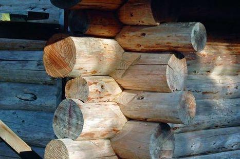 [Construction] Quel avenir pour les structures en bois massif ? | Le flux d'Infogreen.lu | Scoop.it