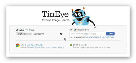 TinEye Reverse Image Search | Machinimania | Scoop.it