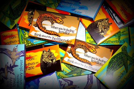 Condoms Push Wildlife Preservation While Getting Wild | #WildlifeWatch | Scoop.it