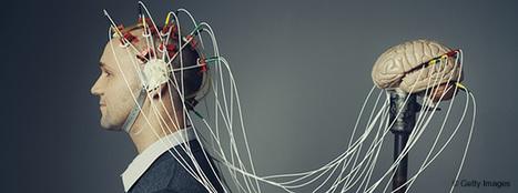 Portrait-robot du startuper à succès - HBR | Management et responsabilité | Scoop.it