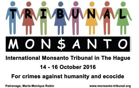 Activists Hold #Monsanto Tribunal at the #Hague – Rising Up with #Sonali #GMO #pesticides #herbicides #neonicotinoids | Messenger for mother Earth | Scoop.it