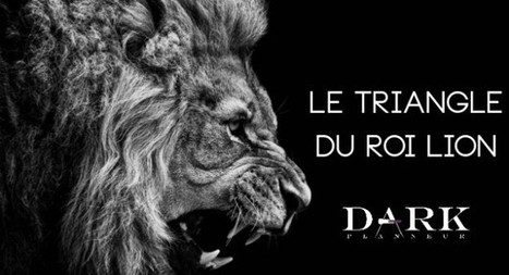 Le triangle du Roi Lion : la ré-invention des Marques | Identité de marque | Scoop.it