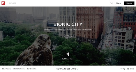 Bionic City magazine, July 2015 | Bionic City | Scoop.it