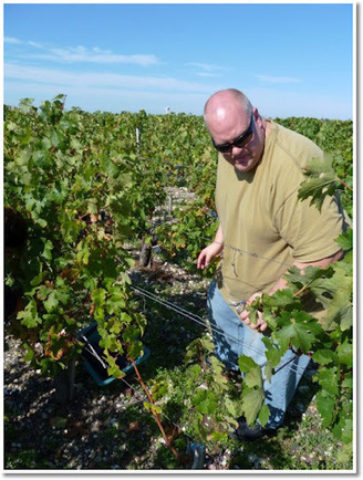 CellarBlog: Top 5 Reasons You Don't Want to Own a Winery   Wine business   Scoop.it