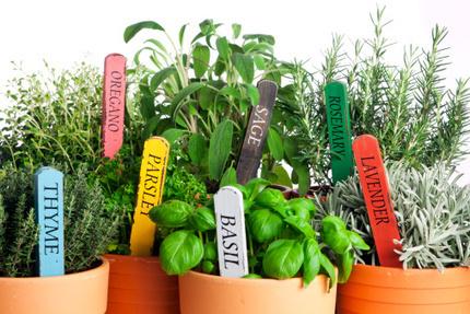 Come fare un orto sul balcone: organizzazione degli spazi   greenworld   Scoop.it