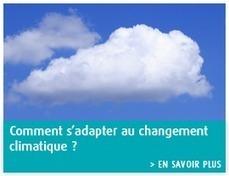 Énergie, Air et Climat - Ministère du Développement durable   Projets SVT 3èmes Thème 6 : Energies fossiles et énergies renouvelables   Scoop.it
