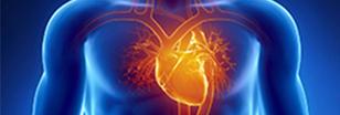 Cardiac Hospital in Bangalore | Heart Surgery | Vikram | vikramhospitalseo | Scoop.it