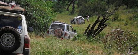 Turismo e Reportage in Sud Africa: Great Limpopo expedition | ViaggiSudAfrica | Scoop.it
