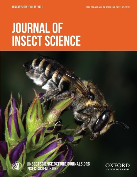 Varroa destructor (Mesostigmata: Varroidae) Parasitism and Climate Differentially Influence the Prevalence, Levels, and Overt Infections of Deformed Wing Virus in Honey Bees (Hymenoptera: Apidae) | apiculture31 | Scoop.it