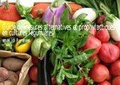 Guide de mesures alternatives et prophylactiques en cultures légumières en Midi Pyrénées -  Chambres d'agriculture de Midi-Pyrénées | Agriculture durable | Scoop.it