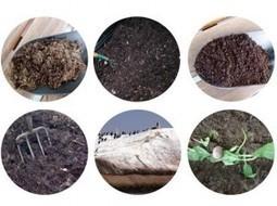 Tipos de abonos orgánicos | ECOagricultor | buenas practicas agrícolas | Scoop.it
