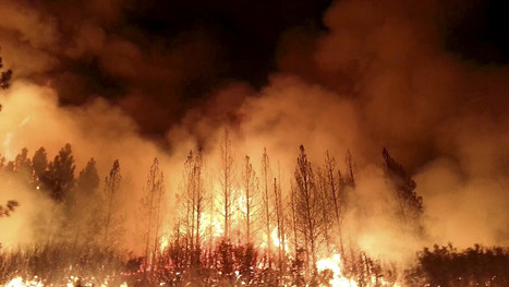 16 Insane Photos Of The Yosemite Wildfire | Wild Resiliency | Scoop.it
