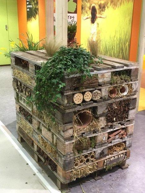 Tour à insectes » Paris côté jardin | Le Petit Jardinier Urbain | Scoop.it